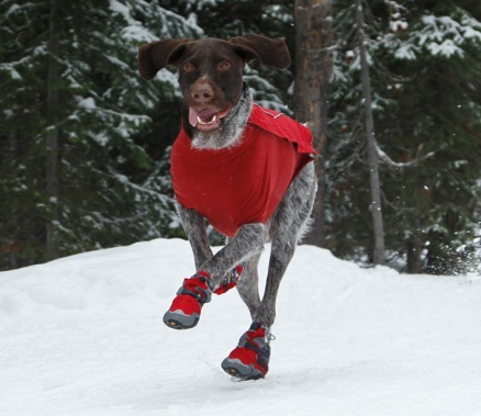 ruffwear_bark_n_boots_polar_trex_insulated_dog_boots_
