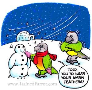 winter_parrots_cartoon