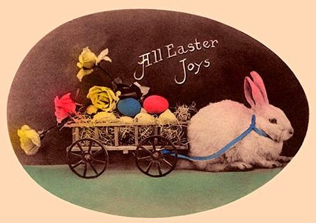 Spare A Rabbit Say No To Bunnies This Easter Conscious Companion