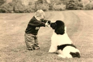 A child should never be left unsupervised with any dog at any time