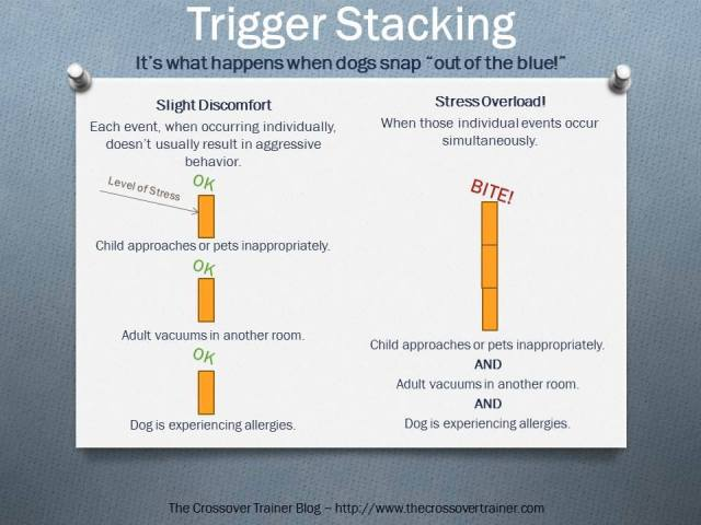 Trigger Stacking_by The Crossover Trainer
