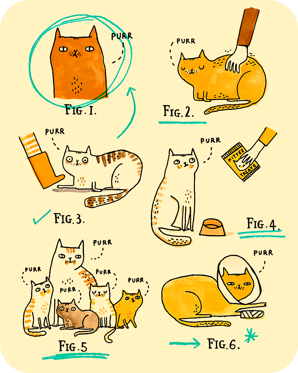 Can Cat Purrs Heal