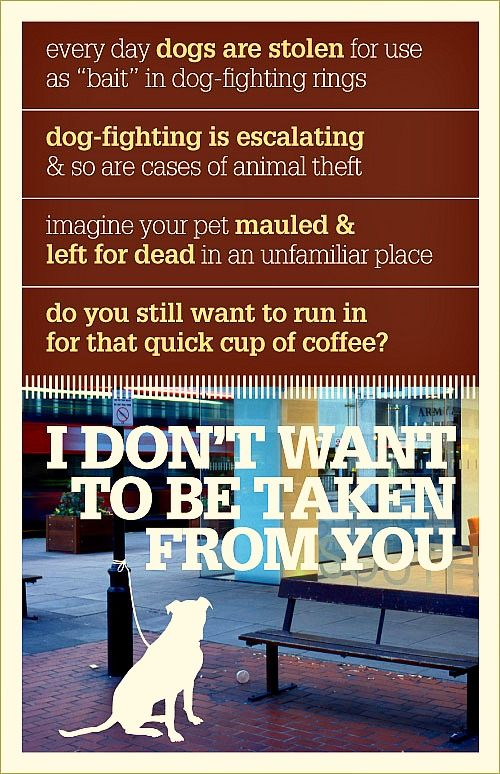 dog theft prevention pets
