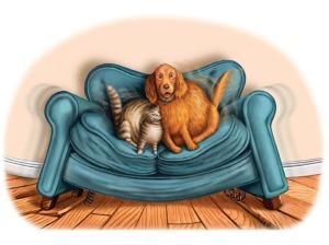 Lindberg_Cat&Dog