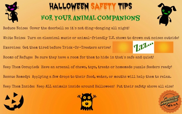 halloween-safety-tips-for-pets