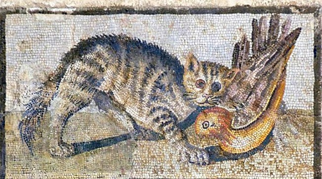 Opus vermiculatum in the National Museum is a floor mosaic with a cat and two ducks from the late Republican era, first quarter of the 1st century BC. House cats were considered to be both useful and reverent to Roman society.