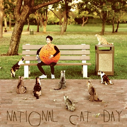 National CAT DAY 2013
