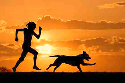 Exercising with your animal companion should be FUN! Amd you increase your bond