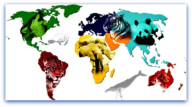 world animal map