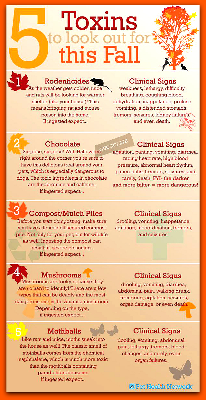 Five Fall Toxins