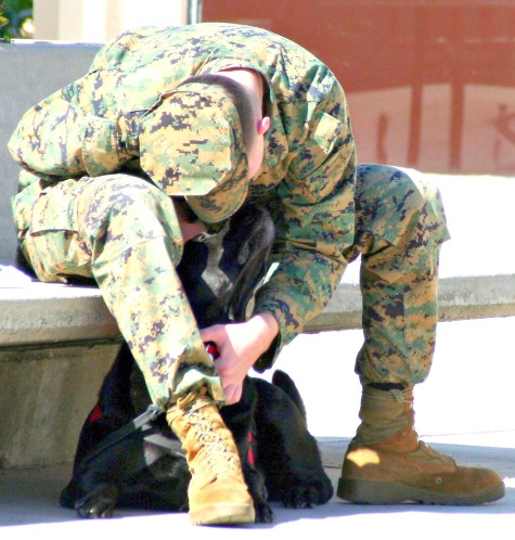 "A U.S. Marine in the Freedom DOgs program with his ""Partner for Life"""