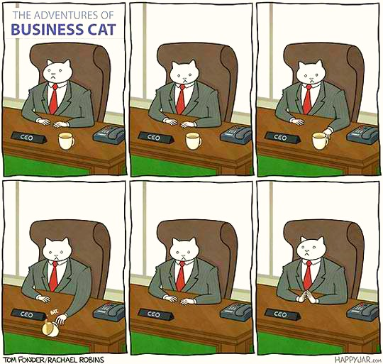 Even Business Cats Act Like Normal Cats