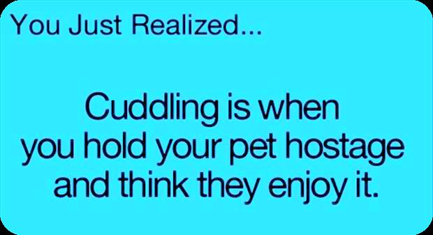 cuddling pets