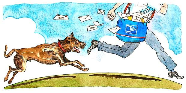 dog behavior mailman barking