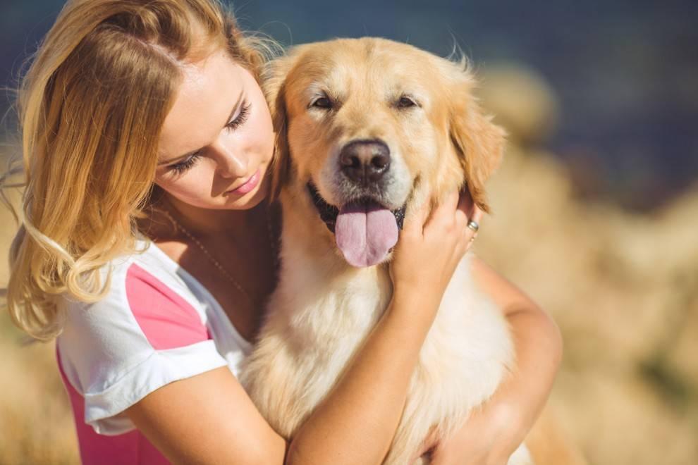dog-ok-hug