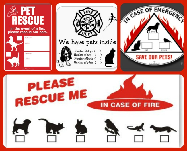 pet rescue stickers _fire_safety_ There are so many pet rescue stickers available for your home and your animal family!