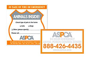 Order a FREE safety window decal for your family!