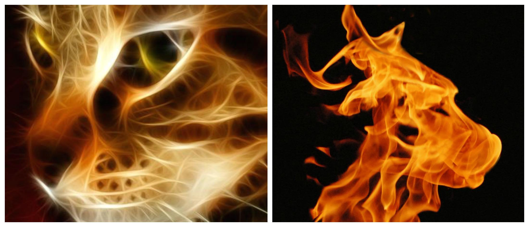 FIRESTARTERS! – Conscious Companion