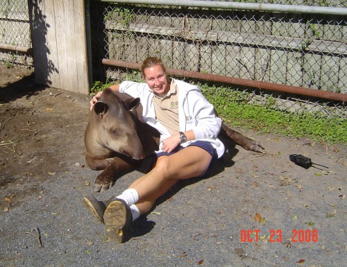 Reward-Based Training is how you gain the trust of animals, like our handsome Tapir, named Melon!