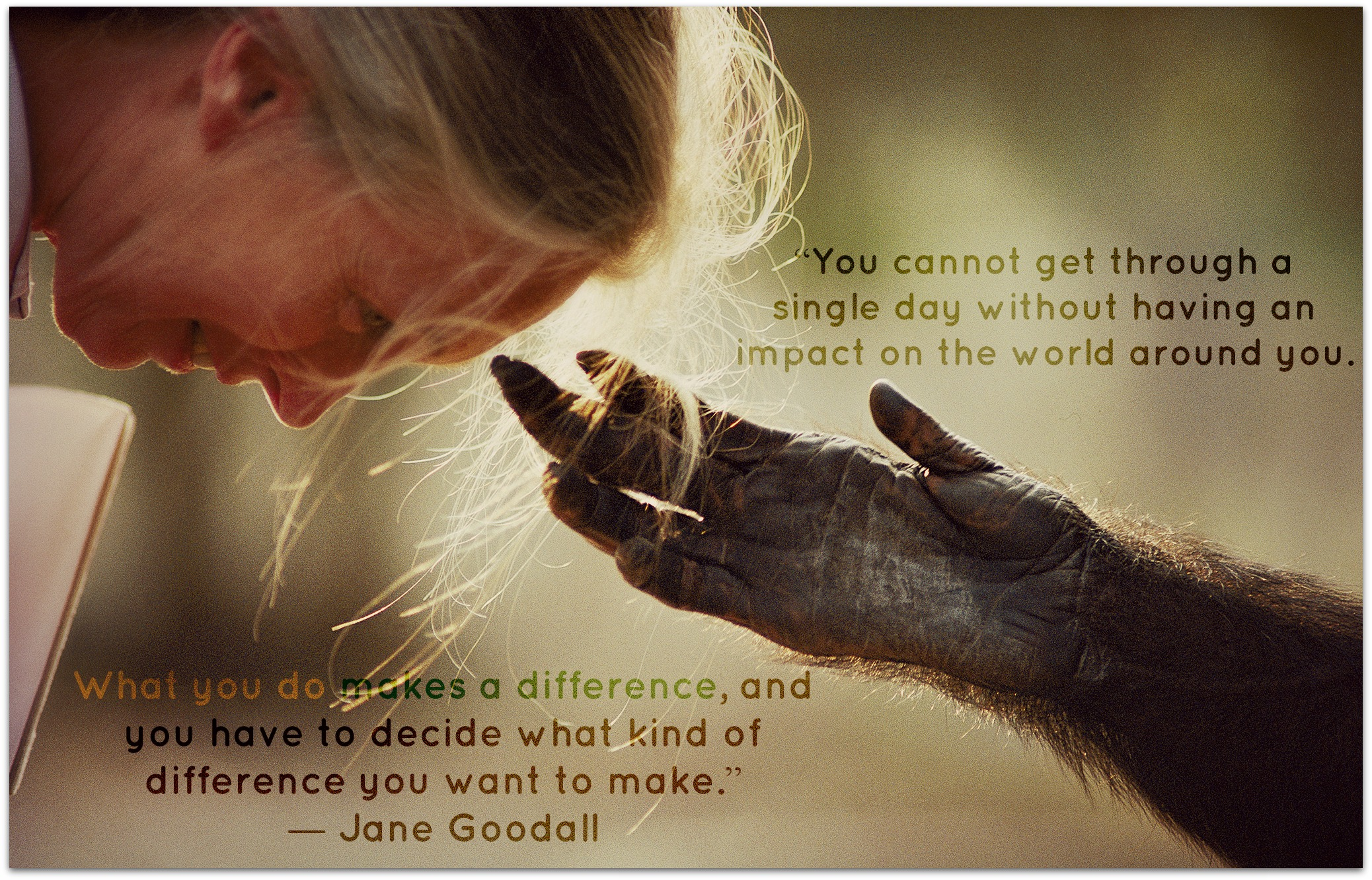 Make A Difference Quotes Conscious Companion