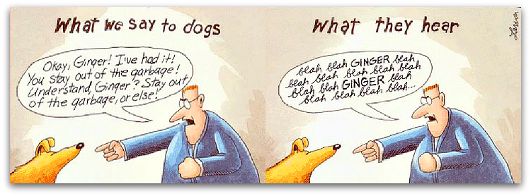 https://consciouscompanion2012.files.wordpress.com/2015/03/blahblah_gary-larson-ginger-dog-what-dogs-hear.jpg