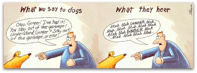 blahblah_gary larson ginger dog what dogs hear