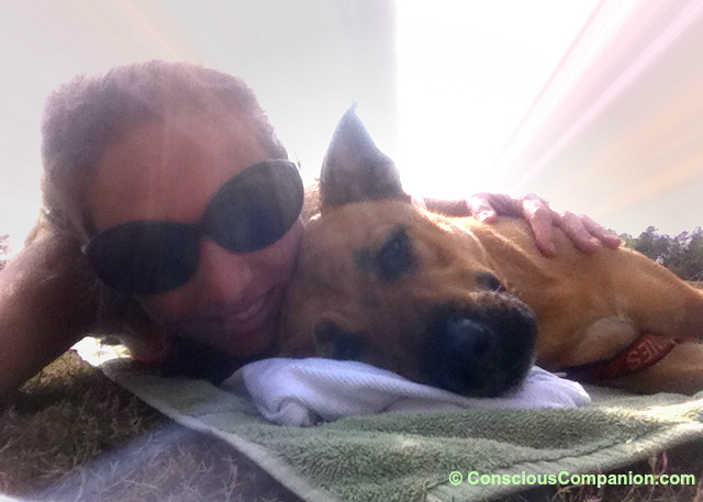 Bonding with your dog_Conscious Companion_Love hormone_Oxytocin