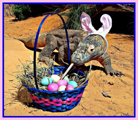 easter egg_komodo_reptiles_dragon