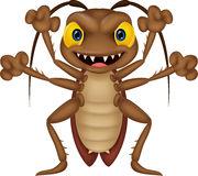 roach fear
