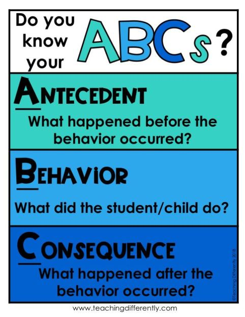 ABCs of behavior_dog behavior_cat behavior_ antecedent_consequence