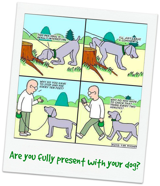 being fully present _dogs_pets