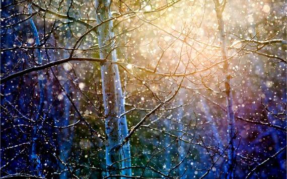 real-snowflakes-falling-up-close