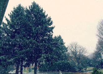 snow VA vienna.jpg