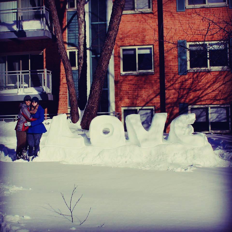 Vienna DC snow