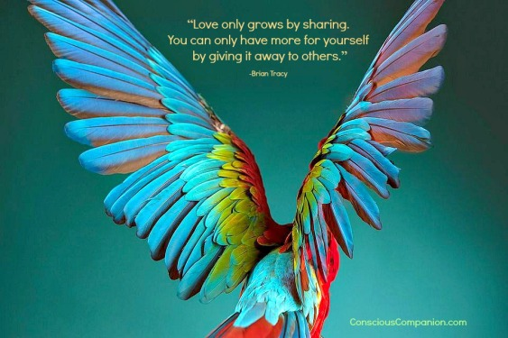 Conscious_Companion_Giving quotes_parrot Training_parrot behavior_Giving tuesday