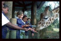 all-zoo-pics-from-work-pc-1302
