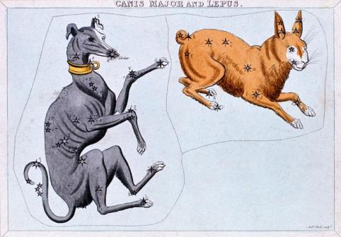dog days of summer_dog and rabbit_ancient greeks_sirius Star