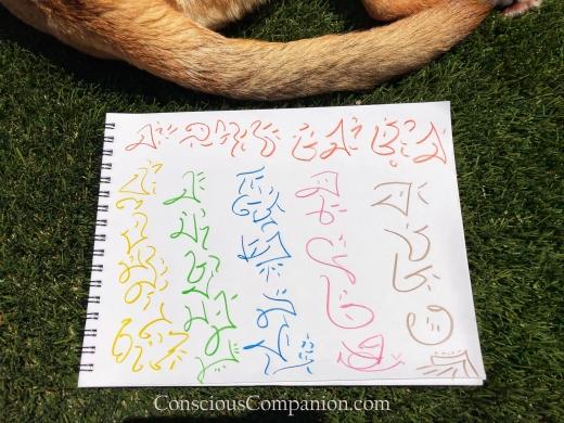 Light Language for Pets