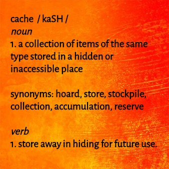 Cache definition_caching_animals who Cache_cats Cache_cougars Big Cats Chache.jpg